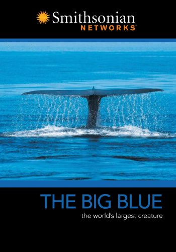 Big Blue / Secrets Of The Great Barrier Reef DVD Image