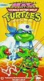 Teenage Mutant Ninja Turtles: The Big Blow Out [VHS] DVD Image