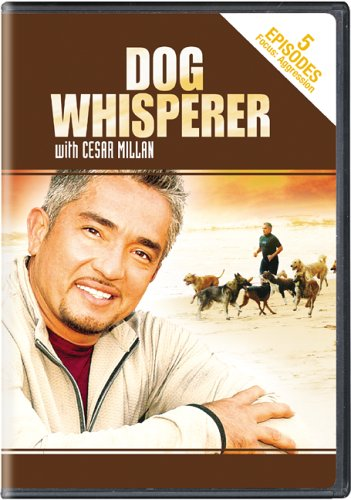 Dog Whisperer With Cesar Millan - Aggression DVD Image