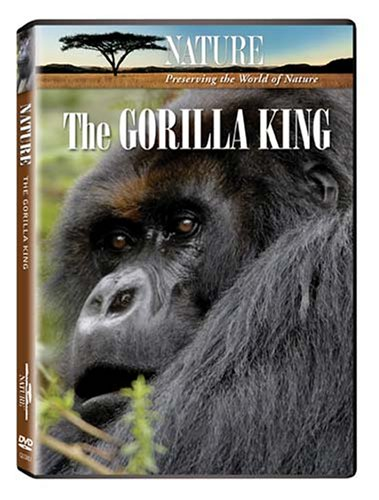 Nature: The Gorilla King DVD Image