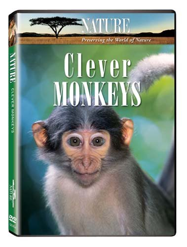 Nature: Clever Monkeys DVD Image