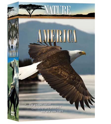 Nature: America DVD Image