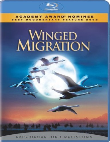 Winged Migration (Blu-ray) DVD Image