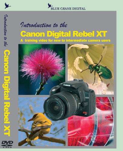 Introduction To The Canon Digital Rebel XT DVD DVD Image