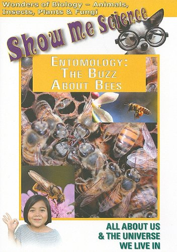 Entomology: Buzz About Bees DVD Image