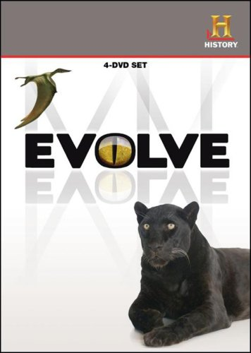 History Channel Presents: Evolve (4-Disc) DVD Image