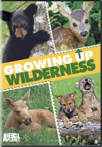 Growing Up Wilderness DVD Image
