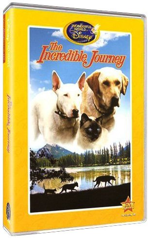 The Incredible Journey (The Wonderful World of Disney) DVD Image