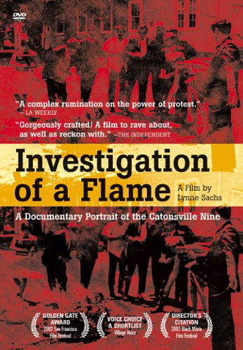 Investigation of a Flame DVD Image