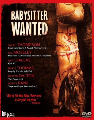 Babysitter Wanted DVD Image