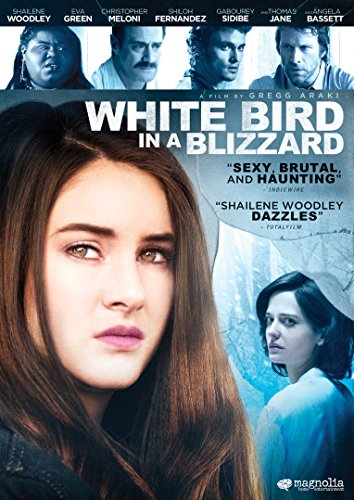 White Bird in a Blizzard DVD Image